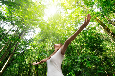 Bring your body to health and wholeness with acupuncture and Chinese medicine in Milwaukee